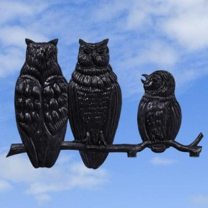 Owl Family Black