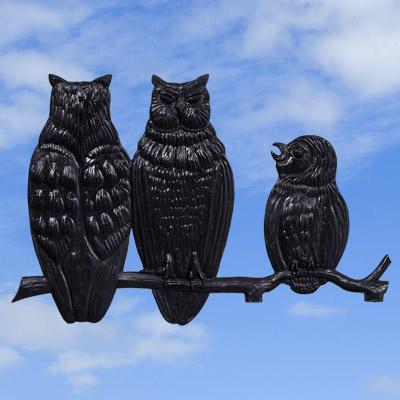 Owl Family Black
