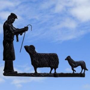 Shepherd Black